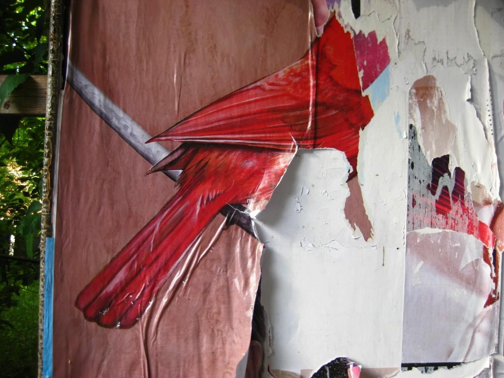 des plumes et du papier